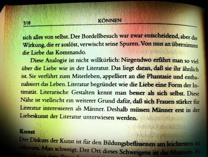 Über die Liebe in der Literatur - LIEBE