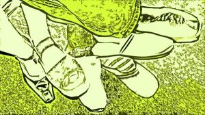 Der grün-glimmende Tausendfüßler - Bild J. Böhme